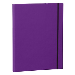 Clip Folder with metal clip,pen loop, elastic band (A4) & letter size,efalin cover, plum