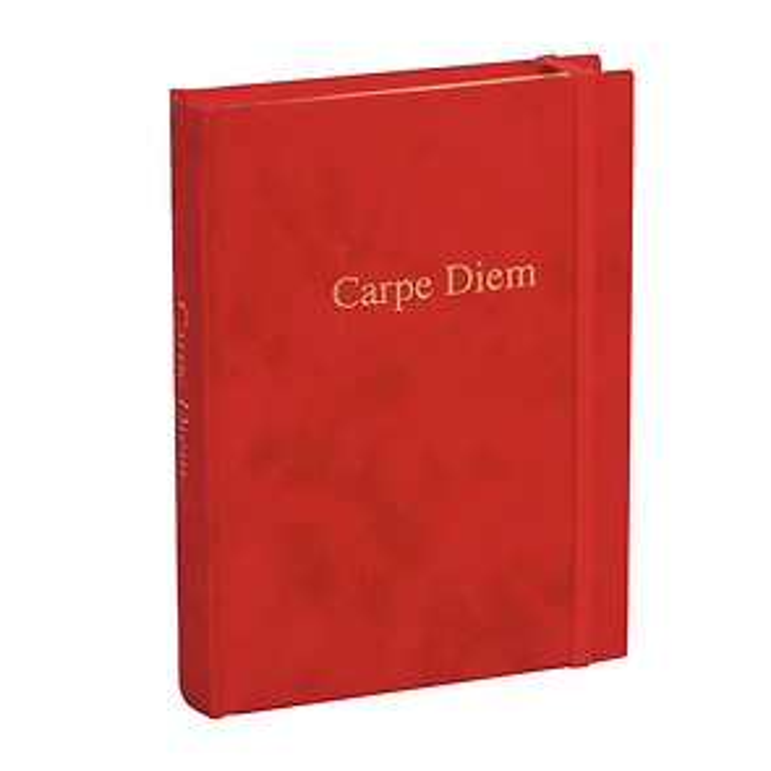 Diary 'Carpe Diem', plain, velvet cover with gold embossing and gilding