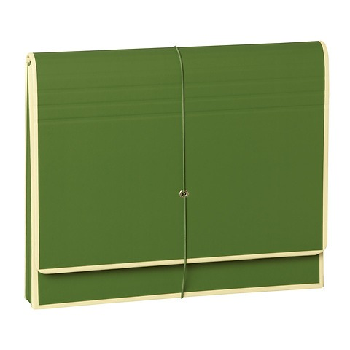 Accordeon, file folder with 12 pockets, elastic band closure, irish